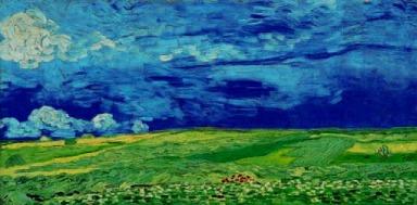 Wheat field under a clouded sky