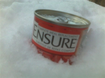 Ensure can insnow